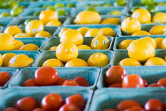 Tomate, Zitrone, Kalk-Regenbogen Stockfoto