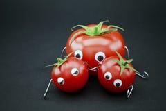 Tomatefamilie lizenzfreie stockfotografie