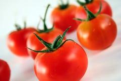 Tomatefrüchte Stockbild