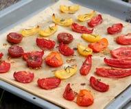 Tomatefruchttrockner stockbild