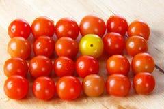 Tomaten 12 van de kers Stock Foto's