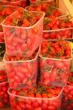 Tomaten Stock Foto's