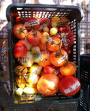 Tomaten 14 Stock Afbeelding