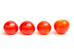 Tomaten stockfoto