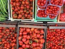 Tomaten aller Artenitalien-pomodoros Stockbild