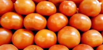 Tomaten angezeigt für Verkauf stockbilder