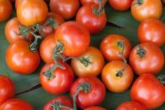 Tomaten auf Bananenblatt Stockfoto