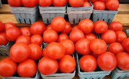 Tomaten auf Bildschirmanzeige an einem Landwirtmarkt lizenzfreies stockbild