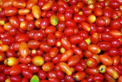 Tomaten auf dem Markt. Stockbild