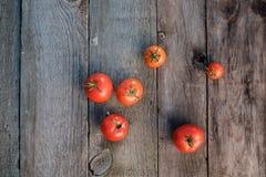 Tomaten auf dem Tisch Lizenzfreie Stockfotografie