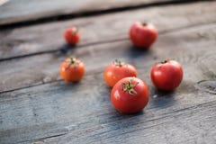 Tomaten auf dem Tisch Lizenzfreies Stockbild