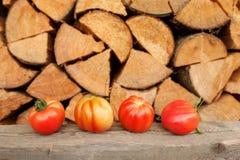 Tomaten auf der hölzernen Tabelle Lizenzfreie Stockbilder