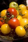 Tomaten auf der Rebe. Lizenzfreies Stockbild