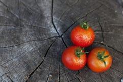 Tomaten auf einem hölzernen Hintergrund Stockbild