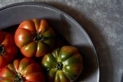 Tomaten auf einem Metallhintergrund lizenzfreies stockbild