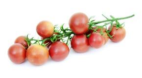 Tomaten auf einem weißen Hintergrund Lizenzfreie Stockfotografie
