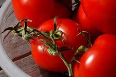 Tomaten auf einer Glasplatte Lizenzfreies Stockbild