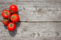 Tomaten auf einer hölzernen Tabelle stockfotos
