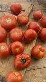 Tomaten auf hölzernem hackendem Brett Lizenzfreies Stockbild