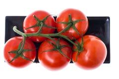 Tomaten auf Niederlassung in der Platte auf weißem Hintergrund Lizenzfreie Stockfotos