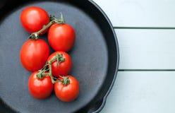 Tomaten auf Rebe Stockbilder