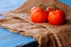 Tomaten auf Rebe mit Beschneidungspfad auf Schneidebrett, hölzerner Hintergrund der blauen Weinlese Stockbild