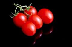 Tomaten auf Schwarzem Stockfotos