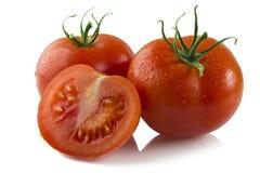 Tomaten auf Weiß Lizenzfreie Stockfotografie