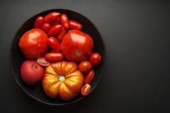 Tomaten bär frukt backgroud Arkivbild