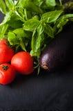 Tomaten, Basilikum und Aubergine Lizenzfreie Stockfotos