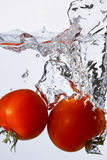 Tomaten bespat in water Royalty-vrije Stock Foto's
