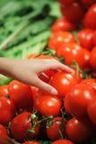 Tomaten bij de markt Stock Fotografie