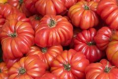Tomaten bij de markt van de landbouwer Royalty-vrije Stock Afbeeldingen
