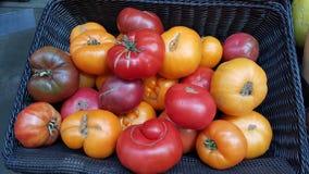 Tomaten bij een Landbouwers` s Markt Royalty-vrije Stock Afbeelding