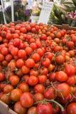 Tomaten bij landbouwersmarkt Stock Afbeeldingen