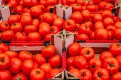 Tomaten bij landbouwersmarkt stock foto's