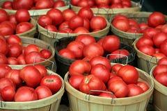 Tomaten bij markt royalty-vrije stock foto