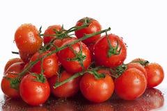 Tomaten in bundels Stock Afbeeldingen