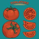 Tomaten clipart Stock Foto