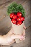 Tomaten in de hand Stock Fotografie