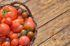 Tomaten in de mand Royalty-vrije Stock Afbeeldingen