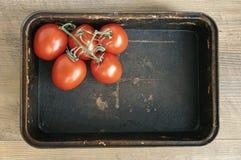 Tomaten in der dunklen Backform Stockfoto