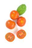 Tomaten der organischen Produkte und Basilikumblätter lokalisiert Stockfotografie