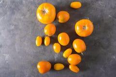 Tomaten der unterschiedlichen Vielzahl Bunter Tomaten Tomatenhintergrund Gesundes Lebensmittelkonzept der frischen Tomaten Stockbild