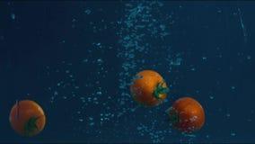 Tomaten in der Zeitlupe, die in Wasser schwimmt stock video footage