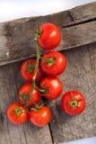 Tomaten, die met kruiden voor het behoud worden gekookt Royalty-vrije Stock Afbeeldingen