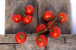 Tomaten, die met kruiden voor het behoud worden gekookt Royalty-vrije Stock Fotografie