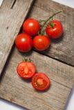 Tomaten, die met kruiden voor het behoud worden gekookt Stock Fotografie