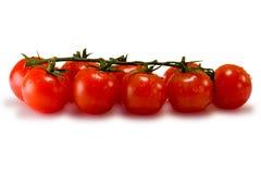 Tomaten die op wit worden geïsoleerd Royalty-vrije Stock Foto's