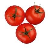 Tomaten die op witte achtergrond worden geïsoleerd? Stock Foto